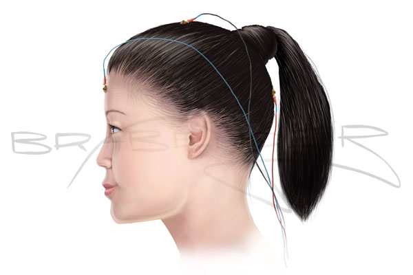 Vis Euip Womans Head 3